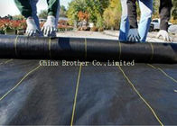 Black Garden Weed Control Fabric For Maintain Temperature To Benefit Healthy Growth Weed Control